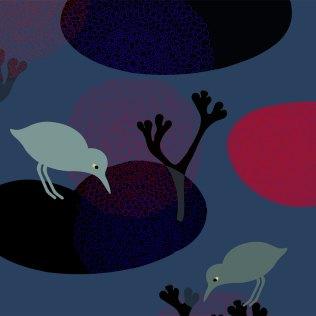 Nattfugler